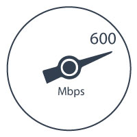 Peplink Balance One Multi-WAN Router: 600Mbps Datendurchsatz