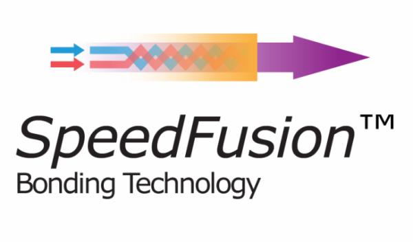 PepVPN / SpeedFusion 20 Peers Lizenzupgrade