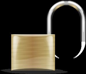 Peplink Lizenzschlüssel für bis zu 5 PepVPN / SpeedFusion Peers